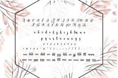 BLINDSPOTTING SCRIPT FONT Product Image 2