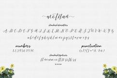 Motisan Script Product Image 5