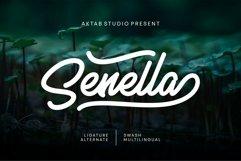 Senella Script Font Product Image 1