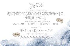 Bright side signature script font logos Product Image 5