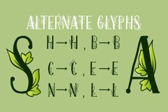Onferia - decorative leaf font Product Image 3