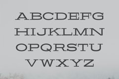 Banquo Serif Font Family Product Image 2