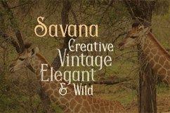 Savana - Display Font Product Image 2