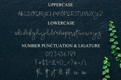 The Sorcoter Signature Font Product Image 6