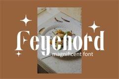 Elmo | Modern Serif Product Image 4