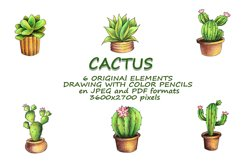CACTI. ORIGINAl DRAWING WITH COLOR PENCILS ELEMENTS. Product Image 2