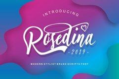 Rosedina - beautyful Stylist brush script Product Image 1