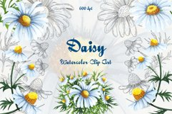 Daisy Watercolor Clipart Product Image 1
