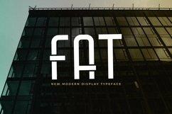 Web Font Fat Product Image 1