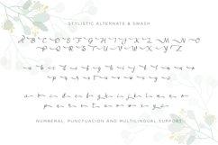 Juliyeta script font Product Image 5