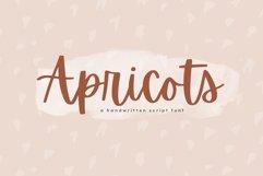 Apricots - Handwritten Script Font Product Image 1