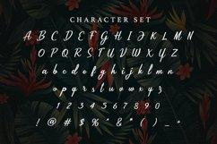 Web Font Jericho Product Image 4