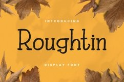 Web Font Rougthin Font Product Image 1