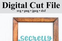 Secretly a Mermaid svg digital cut file Mermaid Love Product Image 5