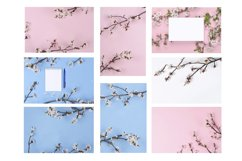 8 Colorful spring backgrounds Product Image 2