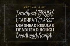 Deadhead Typeface Family Product Image 2