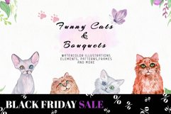 Funny Cats & Bouquets Product Image 1