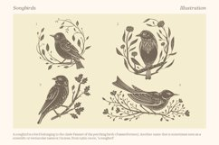 Songbirds graphic collection Product Image 4