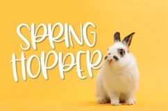 Web Font Spring Hopper - A Fun Hand Lettered Font! Product Image 1