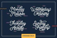 Kingbirds - 6 Styles Monoline Product Image 2