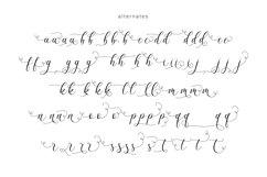 Billaneiva Typeface Product Image 6
