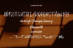 Editorial - A Handwritten Font Product Image 6