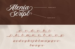 Aetrina Elegant Script Display Product Image 5