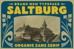 Saltburg - Organic Sans Serif Product Image 1