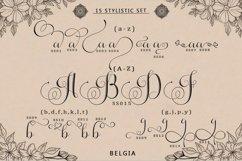 Belgia -Modern Calligraphy Product Image 4