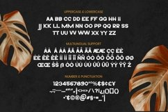 Web Font DixonFont Product Image 5