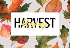 Harvest Blessings Cut File - SVG & PNG Product Image 3