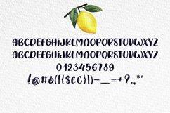 Lemon Summer Font Duo Product Image 4
