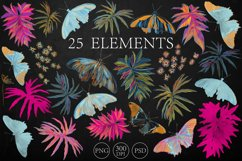 TROPICAL MOTHS patterns Product Image 6