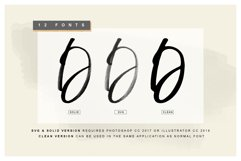Display Signature Font - SVG Product Image 6
