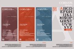 CORVUS Serif font Family Product Image 4