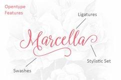 Marcella Script Product Image 3