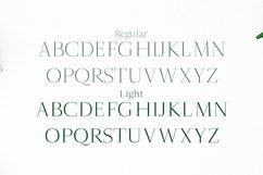 Jesusa Serif Typeface Product Image 2