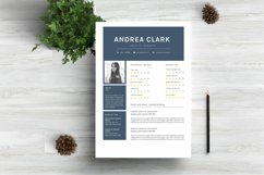 Chic Word Resume Template CV Product Image 1