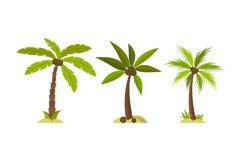 Palm Tree Illustrations, Product Image 1
