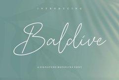 Baldive Signature Monoline Font Product Image 1