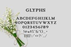 Web Font Arnota Product Image 2