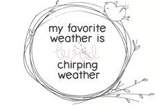 Spring Sunshine - A Serif & Script Font Duo Product Image 5