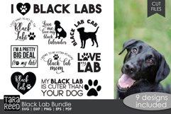 Black Lab Bundle Product Image 1