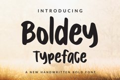 Boldey Typeace - A New Handwritten Bold Font Product Image 1