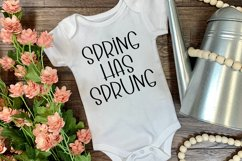 Springtime Wishes - A Cute Handlettered Font Product Image 4