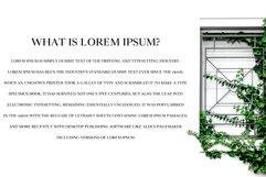Wensley Modern Serif Font Family Product Image 5