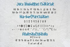 Juice Blueberries Product Image 4