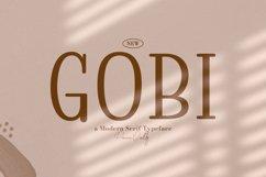 Gobi Product Image 1