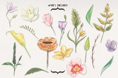 18 Spring Floral Blooms Clipart Watercolor Elements Pastels Product Image 3