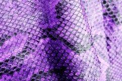 20 Coloured Snake Print Snakeprint Skin Photograph Bundle! Product Image 2